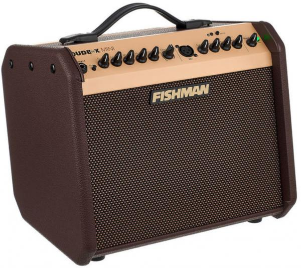 Acoustic guitar combo amp Fishman                        Loudbox Mini Bluetooth