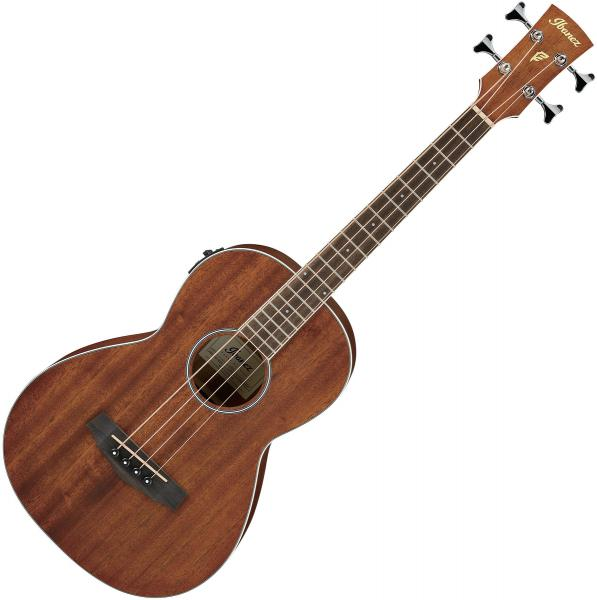Acoustic bass Ibanez PNB14E OPN - Natural
