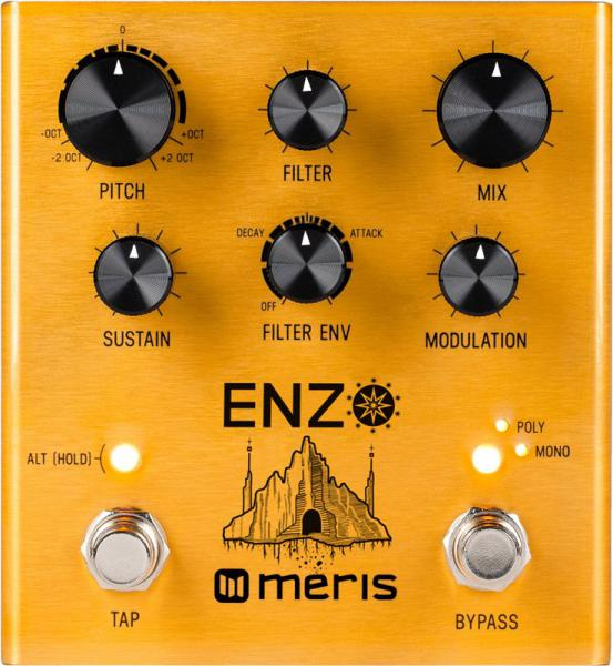 Guitar synthesizer Meris Enzo Multi-Voice Instrument Synthesizer