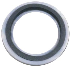 Damper Remo Muffle Ring Control 10