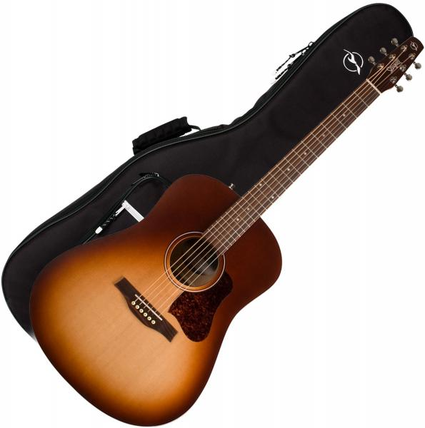 Acoustic guitar Seagull Entourage +Bag - autumn burst