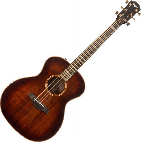 Acoustic guitar & electro Taylor Custom GA-e V-Class - Blackwood